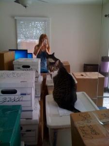 Unpacking Linda and Lily
