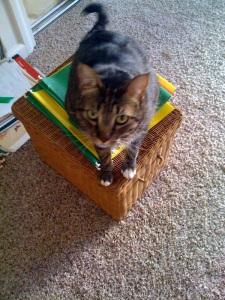Zoe on File Box